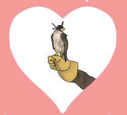 Falcon inside of a heart shape